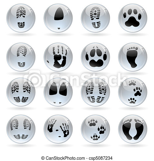 human and animal prints  - csp5087234