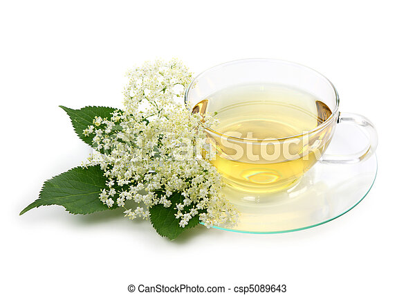 Elder tea - csp5089643