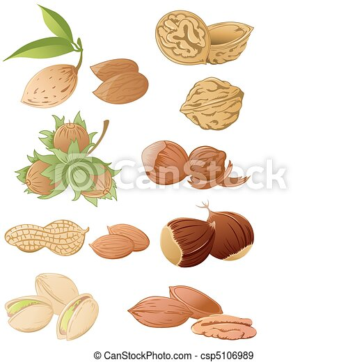 set of various nuts - csp5106989