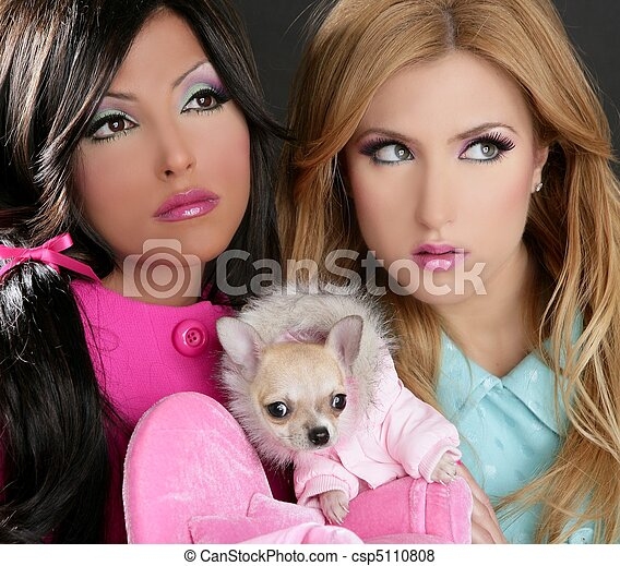 1980s Fashion  Women on Pictures Of Fashion Doll Women With Chihuahua Dog Pink 1980s   Fashion