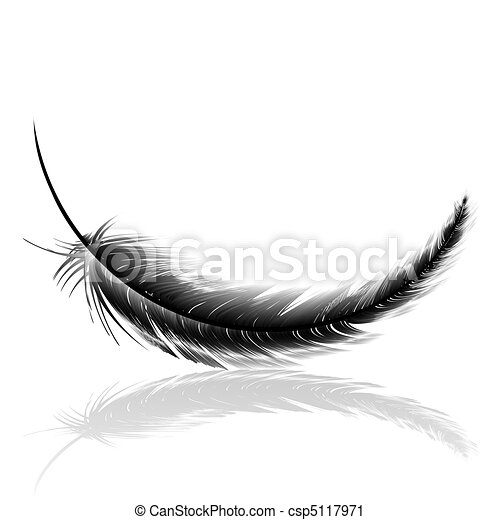 Black delicate feather with shadow - csp5117971