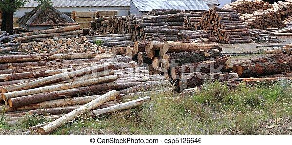 troncos, madera, industria, troncos, apilado, Al aire libre - csp5126646