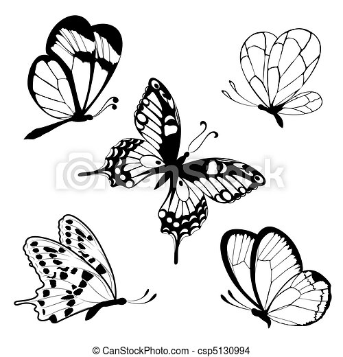 Set  black white butterflies of a t - csp5130994