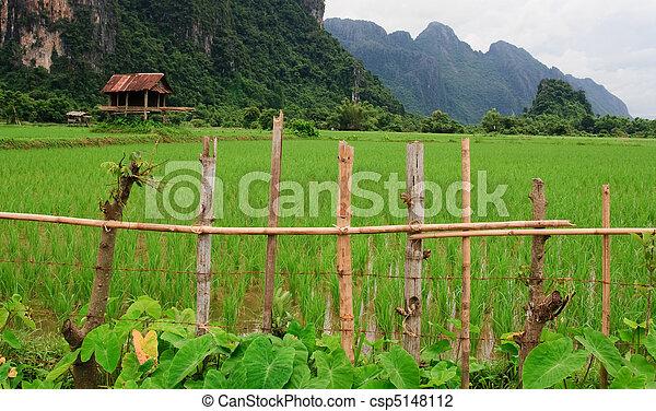 Laos Rice Field Hut - csp5148112