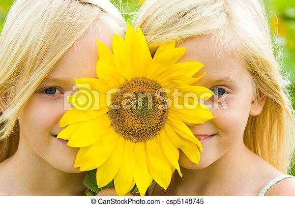 crianças, girassol - csp5148745