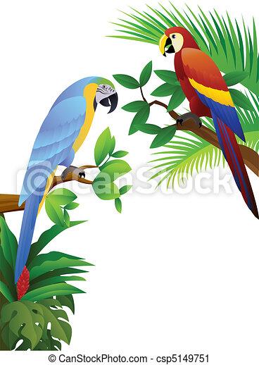 parrot bird - csp5149751