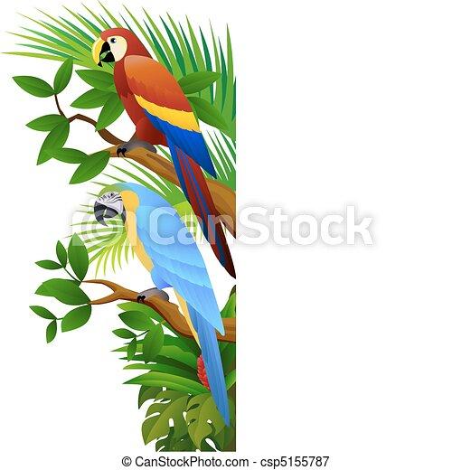 parrot bird - csp5155787