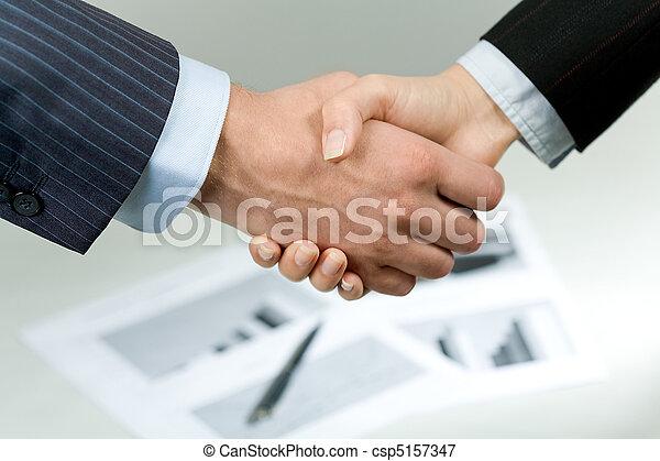 Companions? handshake - csp5157347