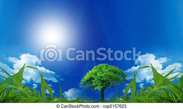 Eco Friendly - csp5157623
