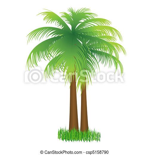 coconut tree - csp5158790