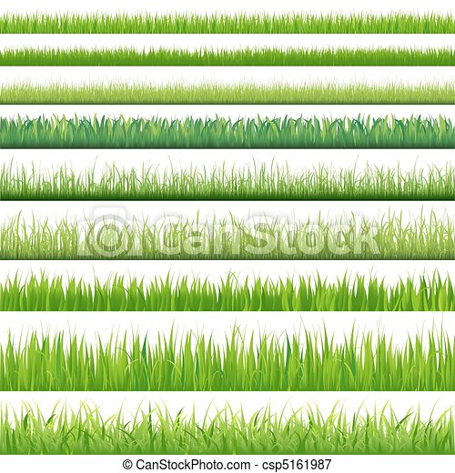 Big Set Grasses - csp5161987