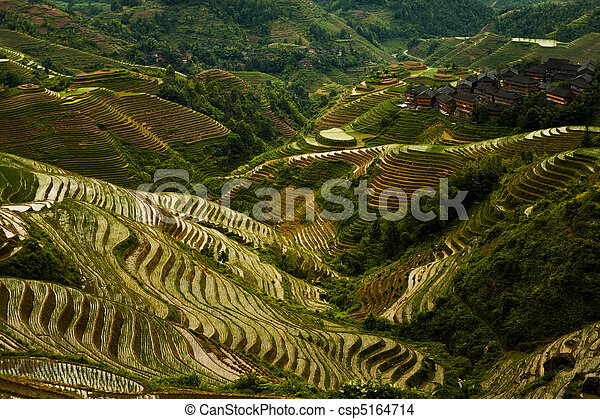 Steep Rice Terrace Mountain Longji Overcast - csp5164714