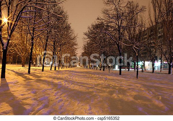 avenue at night - csp5165352
