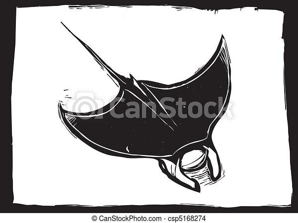 Manta ray - csp5168274