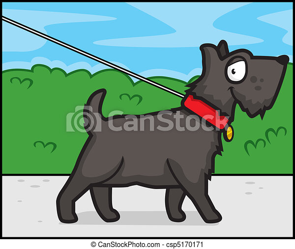 Dog Walking - csp5170171