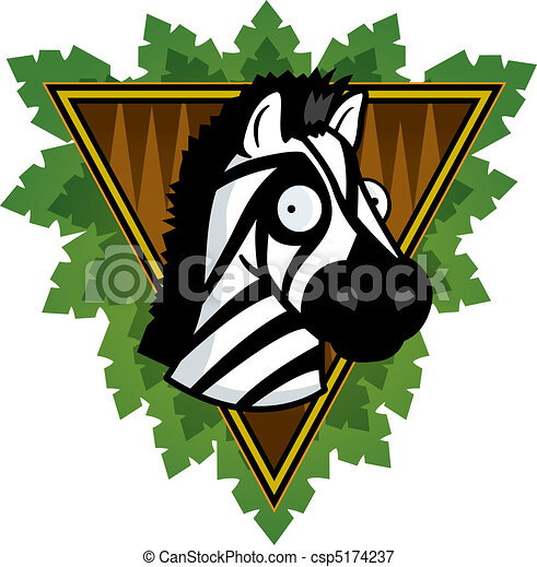 Zebra, safari - csp5174237