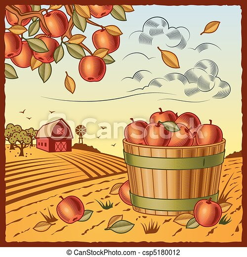 Landscape with apple harvest - csp5180012
