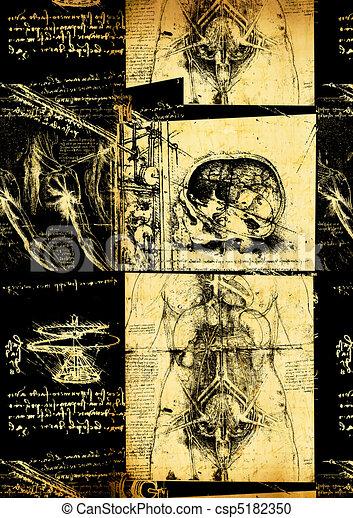 Leonardo's Da Vinci engineering & Anatomy  drawing - csp5182350