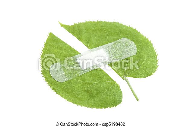 environment protection - csp5198482