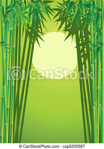 bamboo forest - csp5200587
