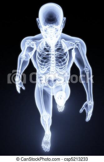 human xray - csp5213233