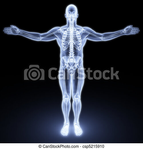 male body - csp5215910