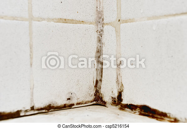 Black Mold - csp5216154