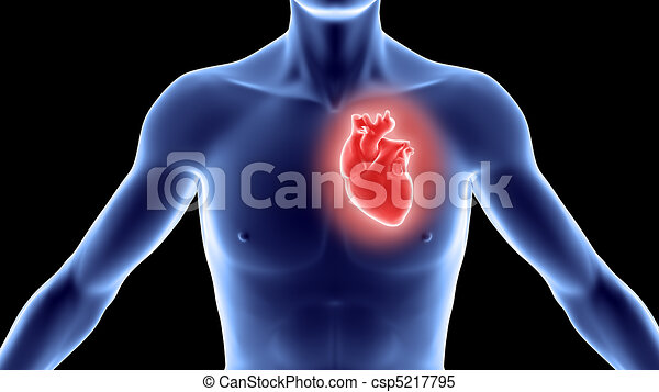 Human body with heart - csp5217795