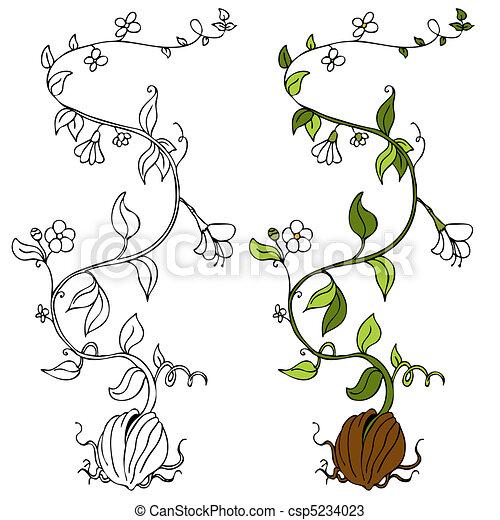 Plant Vine - csp5234023
