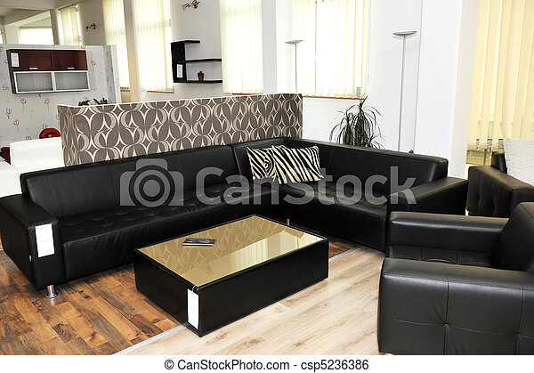 modern livingroom indoor - csp5236386