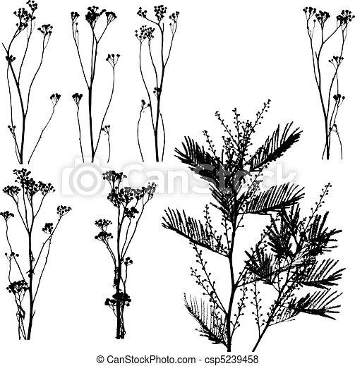 Nature Catalog I - csp5239458