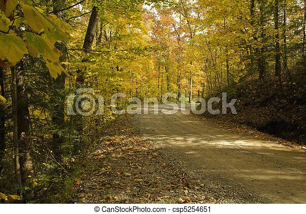 Autumn, Cherokee NF - csp5254651