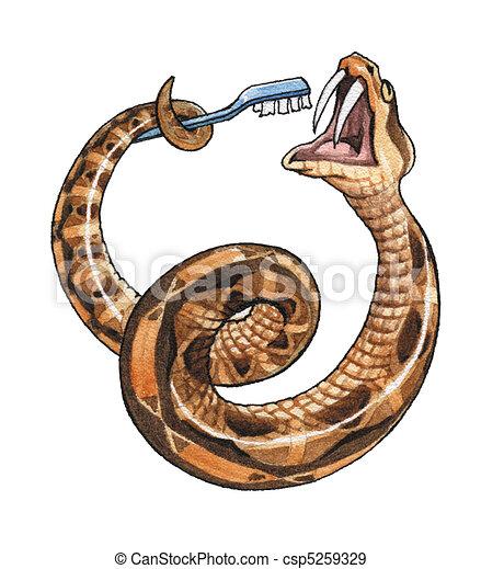 Illustration de gabon vip re les gabon vip re nettoie les long csp5259329 - Dessin de vipere ...