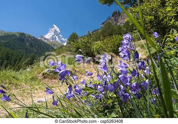 Matterhorn - Swiss Alps - csp5263408