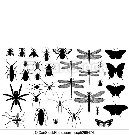 silhouettes of insects and spiders  - csp5269474