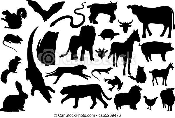 miscellaneous animal silhouettes - csp5269476