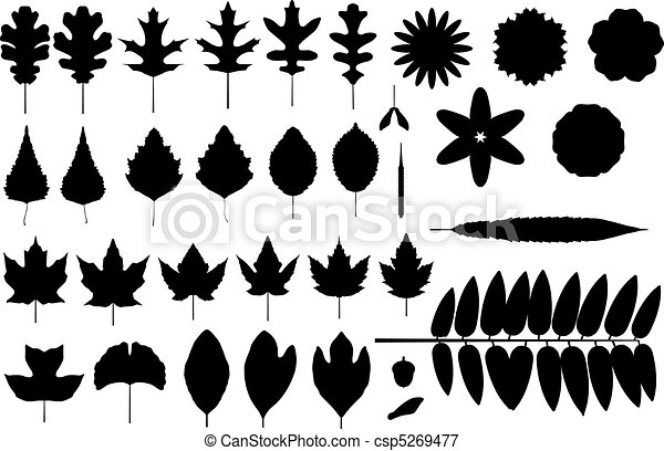 silhouettes of leaves and flowers - csp5269477