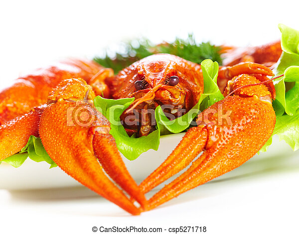 Boiled crawfish on a white background - csp5271718