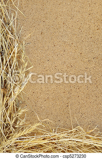 Detail of dry grass hay and OSB, oriented strand board  - frame - csp5273230