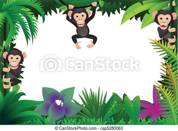 Cute chimp in the jungle - csp5280063