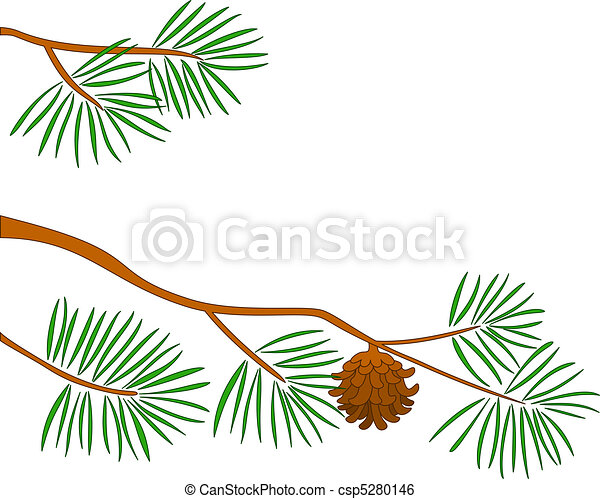 Fur-tree branch - csp5280146