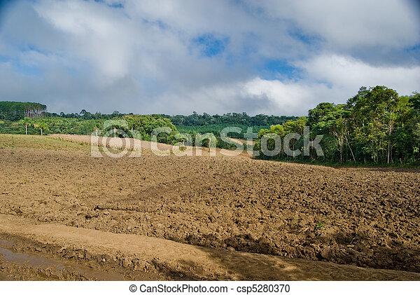 Land degradation - csp5280370