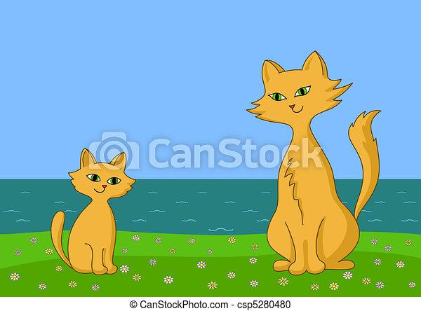 Cat and kitten on sea coast - csp5280480