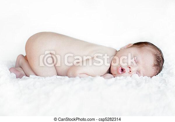 Newborn baby sleeping - csp5282314