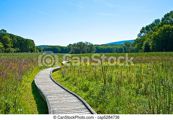Stock Image of Appalachian Trail - View of Appalachian trail ...