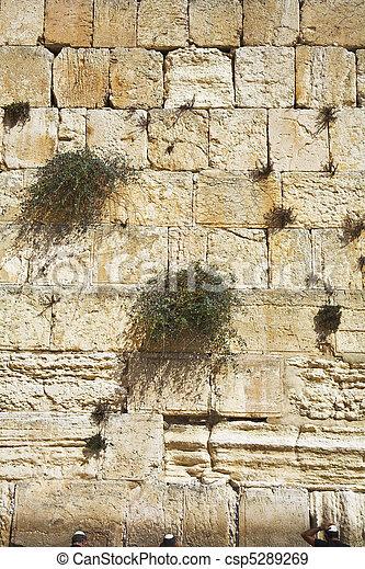 ∥, 西部, 壁, エルサレム - csp5289269 ∥, 西部, 壁, エルサレム, 寺院