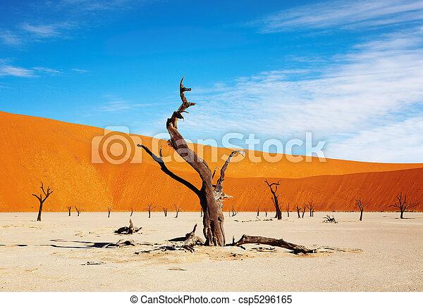Namib Desert, Sossusvlei, Namibia - csp5296165