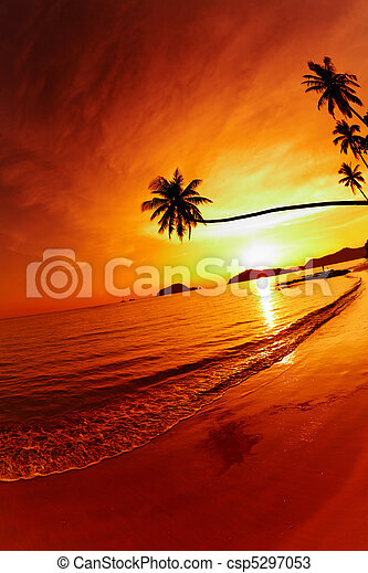 Tropical beach at sunset - csp5297053