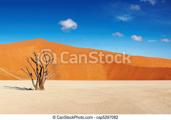 Namib Desert, Sossusvlei, Namibia - csp5297082