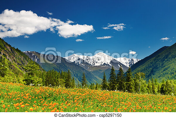 paesaggio montagna - csp5297150